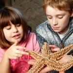 Junior Aquarist Experience